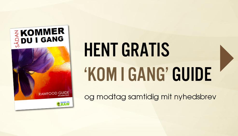 Download gratis 'Kom i gang guide'