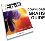 Gratis guide