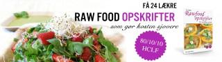 Sunde raw food opskrifter - ebog