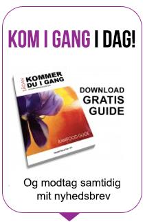 Download gratis 80/10/10 guide