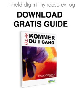 Download gratis kom i gang guide