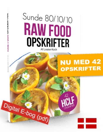 Sunde raw food opskrifter (E-bog)