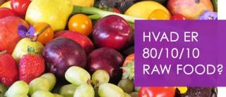 Lær mere om 80/10/10 raw food