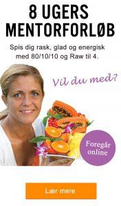 Spis dig rask - online mentorforløb