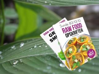 Ebøger med raw food opskrifter og grønne smoothies